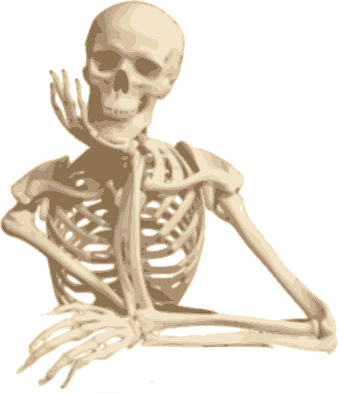 Alimentos que fortalecen la salud de los huesos frente al envejecimiento